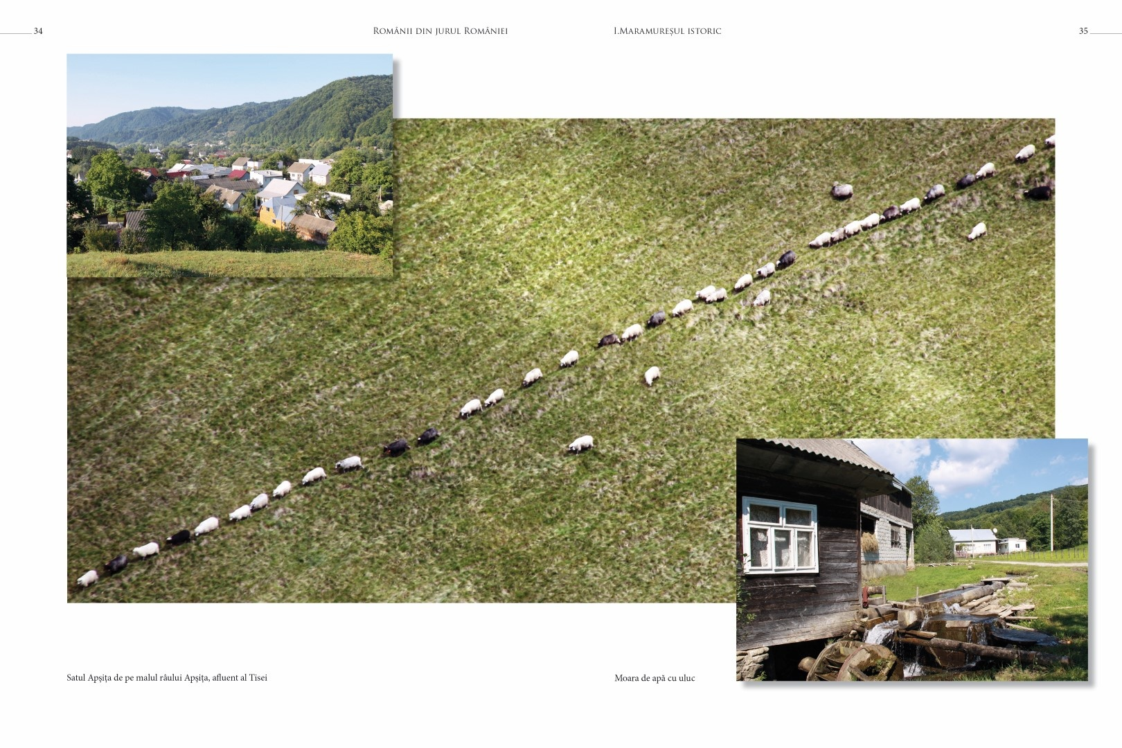 soimaru-2014-tipografie18-Large
