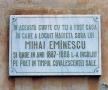 Aici s-a aflat casa din Botoșani în care a locuit sora Harieta