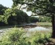 Lacul codrilor albastru... din pădurea Ipotești