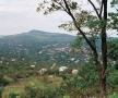Cernăuțiul cu înălțimea Țețina, văzute de pe colina Roșa