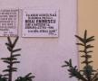 Urmele lui Eminescu la Blaj
