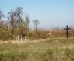 Mormantul comun din Jovkva al celor 224 de patrioti ucraneni si ...al lui Dosoftei