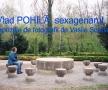 vlad-pohila-60mic-1