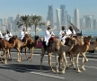 qatar-2014-95