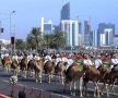 qatar-2014-96