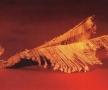 muzeul-aurului-brad-3