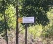 rosia-montana-septembrie-2013-12