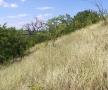 locul-unde-a-fost-complexul-turnul-dezrobirii-basarabiei-6