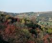 """Partea de nord, de peste deal, a satului Sinești, numită """"La Făgețel"""", de unde izvorăște Ichelul"""