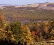 Cascada de iazuri din valea Ichelului, la Năpădeni, Cornova, Rădeni